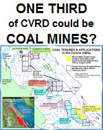 One third of CVRD targeted for coal