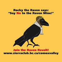 Rocky the Raven